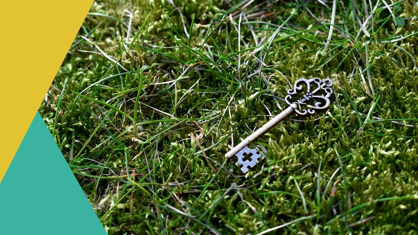 Waarden -Oude sleutel in het gras